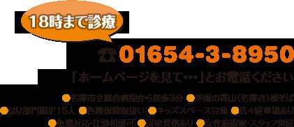 電話:01654-3-8950